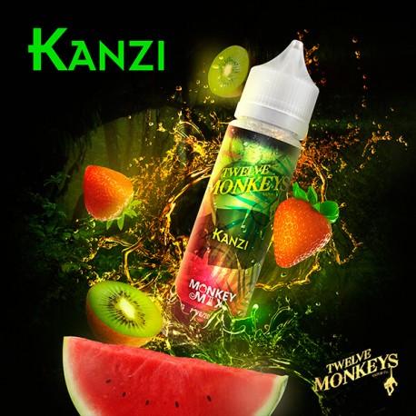 kanzi twelve monkeys ml